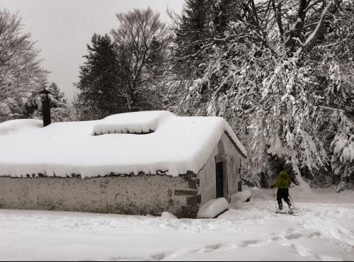 Trekking con Raquetas de nieve [CANCELADO]
